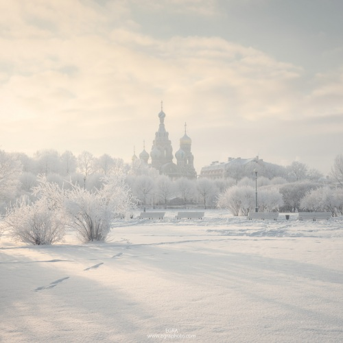 Russia : Saint Petersburg : Field of Mars & the Savior on the Spilled Blood