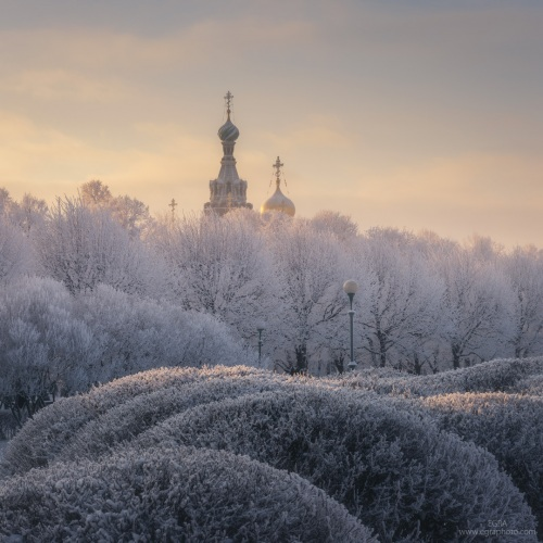 Russia : Saint Petersburg : domes of the Savior on the Spilled Blood